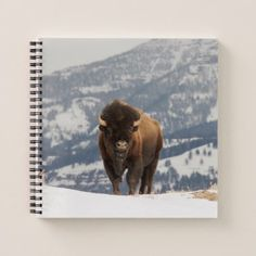 An American Bison Notebook - winter gifts style special unique gift ideas