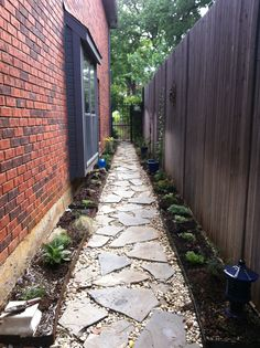 Just planted: A straight and narrow walkway down a sunny south-facing side yard in north central Texas. Walkway itself is flagstone surrounded by river rock. Both sides are lined with metal edging. I've just put into the ground perennial, drought-tolerant plants, including Mexican hair, yellow yarrow, blue fescue, lambs ear, purple oxalis, orange and pink lantana, purple verbena, and white alyssum. White and purple clematis are in pots with metal trellises. Next step is to apply mulch.