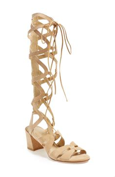 85d5ee7a833c Schutz Desert Horizon Tall Gladiator Sandals at Free People Clothing  Boutique