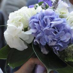 Le ortensie un fiore bellissimo..e se fosse il tema del vostro matrimonio? Alessandro Tosetti www.tosettisposa.it Www.alessandrotosetti.com #abitidasposa #wedding #weddingdress #tosetti #tosettisposa #nozze #bride #alessandrotosetti