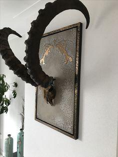 Animal skull art ibex