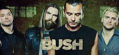 banda bush - Pesquisa Google