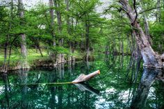 Blue Hole in Wimberly, Texas. Very beautiful. Taken 4-27-13. Credit: Joyce Lester Powell