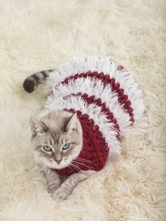 Crochet this cute holiday sweater for your pet! Pattern calls for 1 - 3 skeins of Wool-Ease Thick & Quick and 1 skein of Fun Fur, plus a size P-15 (10 mm) crochet hook.
