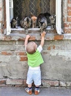 TOP 10 Heartwarming Photos Of Children With Their Pets Good Morning dear friends! Animals For Kids, Animals And Pets, Baby Animals, Funny Animals, Cute Animals, Funniest Animals, Jungle Animals, Animals Images, Wild Animals