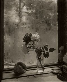 """Exhibition: 'The Intimate World of Josef Sudek' at Jeu de Paume, Paris. """"Josef Sudek, a one-armed man lugging around a large format camera, is one of my top ten photographers of all time."""" https://artblart.com/2016/09/18/exhibition-the-intimate-world-of-josef-sudek-at-jeu-de-paume-paris/ Photo: Josef Sudek. Josef Sudek. 'La Dernière Rose [The Last Rose]' 1956"""