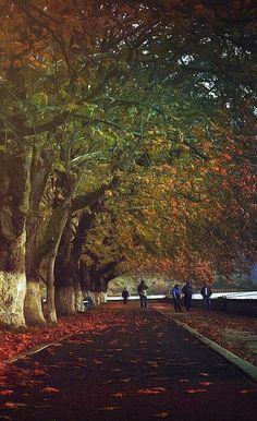 Autumn walk in Lake of Ioannina, Epirus, Greece   by spirosgrv