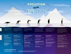 Evolution of a SysAdmin #infographic