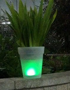 Solar Led Flower Pot Vase Lamp, Landscape Lighting Lantern,easter,for Christas New Year Thnaks Giving Day Garden Bar Gift Toy qlee http://www.amazon.com/dp/B009AVQP40/ref=cm_sw_r_pi_dp_0Tizvb1CQA6YE
