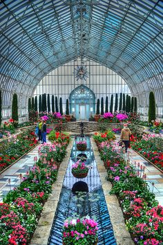 Marjorie McNeely Conservatory - St. Paul, Minnesota USA. photo by LizNemmers