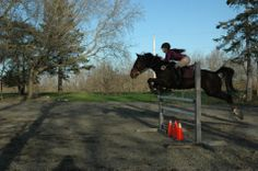 Jumping standardbred boy
