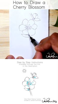 Learn how to draw Cherry Blossoms (sakura flower) with this simple step by step tutorial made for beginners. These pencil sketches are perfect for your bullet journals and sketchbooks, join me on this Flower Drawing Tutorials, Flower Sketches, Art Tutorials, Drawing Ideas, Cherry Blossom Drawing, Cherry Blossom Flowers, Cherry Drawing, Cherry Blossom Watercolor, Sakura Cherry Blossom