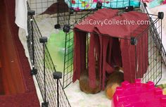 how to make your guinea pig a fleece forest