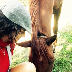 Horse life in country