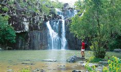 """See 7 photos and 2 tips from 39 visitors to Cedar Creek Falls. """"Amazing fresh water creek, amazing after rainy season because you can see the falls. Coast Australia, Queensland Australia, Australia Travel, Cedar Creek Falls, Airlie Beach, Secluded Beach, Shore Excursions, Walkabout, Sunshine Coast"""