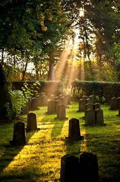 A bit of Light touches headstones in a cemetery well cared for. We must pay our respect for the Dead. Cemetery Headstones, Old Cemeteries, Cemetery Art, Graveyards, Highgate Cemetery, Terra Nova, Post Mortem, After Life, Kirchen