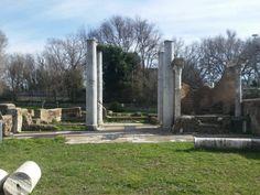 Parco Archeologico di #Ostia antica. Visitiamo la sinagoga di Ostia, la più antica del Mediterraneo occidentale Plants, Planters, Plant, Planting