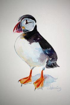 Atlantic Puffin original watercolour bird by christydekoning, $75.00