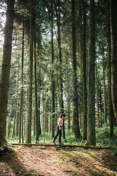 Natur, Wald, Waldbaden, Inspiration, Genuss, Sein, Jahreszeiten, Herbst, Frühling, Bäume, Sinn, Licht