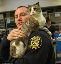 Cat cruelly set ablaze finds new home with firefighter in time for the holidays