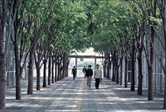 Saitama Plaza, Saitama, Japan  Peter Walker & Partners, Berkeley, CA