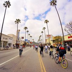 North Hollywood, Concrete Jungle, Never Stop Exploring, Just Go, Biking, Shots, Street View, Events, Happenings