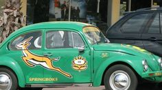 Springbok Volla South African Rugby, I Am An African, Rugby Sport, Cheetahs, Where The Heart Is, Lions, Shark, Volkswagen, Kid Decor