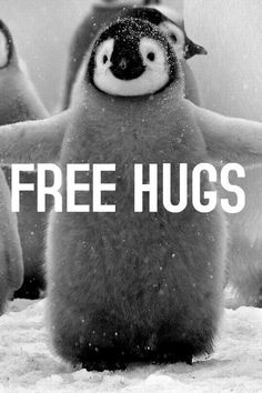 Just walk around wherever in a shirt that says free hugs, with a sign that says free hugs. #ProjectSmile Penguin Love, Hugs, Yes Please, Photo And Video, Baseball Cards, Videos, Animals, Instagram, Sports