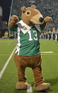 Gainer the Gopher, Saskatchewan Roughriders mascot. Go Rider, Saskatchewan Roughriders, Sports Advertising, Canadian Football League, Green Colors, Teddy Bear, Heavens, History, Cake Pops