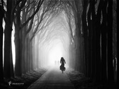 Photo Gone in a few sec vs 48 par Lars van de Goor on Black N White Images, Black And White, Beautiful Places, Beautiful Pictures, Amazing Places, Great Photos, Dark Side, Landscape Photography, White Photography
