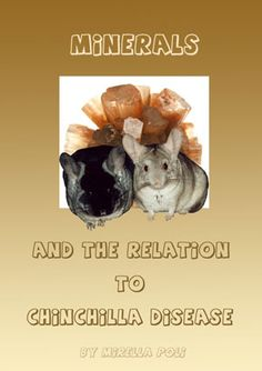 Minerals And The Relation To Chinchilla Disease