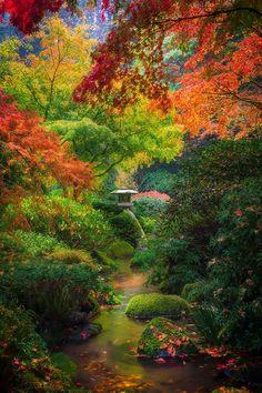 Fall In Portland, Oregon Japanese Gardens