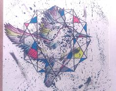 Bird - Art - Drawing