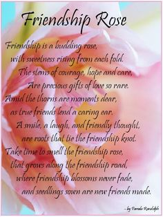 FRIENDSHIP ROSE - an original poem about friendship written by Pamela Randolph (Arizona Poet Lady)