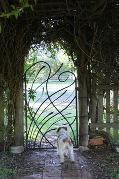 Grasslands Garden Gate – Colin Little Steep Gardens, Farm Gardens, Outdoor Gardens, Metal Gates, Wrought Iron Gates, Love Garden, Dream Garden, Garden Gates And Fencing, Fences