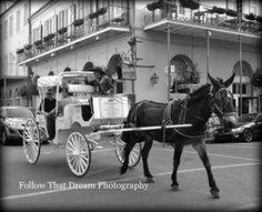 """http://www.followthatdreamphotography.com  """"City Ride"""" Picture All art comes with a matting of your choice of black or white and a protective cover and signed.If no color is chosen for the matting one will chosen for you.Email me for different sizes. 8x10 (fits an 11x14 frame)$30 + shipping(shipping rates depends on location,email for info)"""