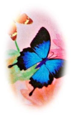 Nail Art Sticker, Nagelsticker, watertransfer, STZ 091, Cartoon, Tattoo