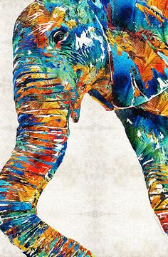 Colorful Elephant Art By Sharon Cummings by Sharon Cummings