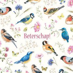 Janneke Brinkman Wenskaarten sinds januari 2010 is Comello de uitgever van de wenskaarten van Janneke Brinkman. De kaarten hebben een formaat van 15,5 x 15,5 cm. Deze kaarten zijn verkrijgbaar in de boekhandel en bij diverse supermarkten.