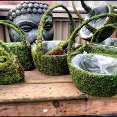 Moss Baskets