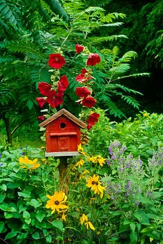 little red birdhouse with black-eyed susans and red hollyhocks