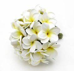 Large frangipani posy in yellow/white. Lots of other colours available. Find your perfect wedding flowers at http://www.loveflowers.com.au/