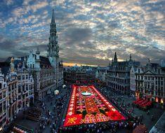 Het grootste bloementapijt ter wereld in Brussel
