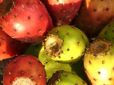 Benefits/Uses of Prickly Pear for Skin, Nails, Hair and Health - Stylish Walks Prickly Pear Cactus, Sicilian Recipes, Pitaya, Italian Cooking, Facial Oil, Creative Food, Seed Oil, Natural Oils, Veggies