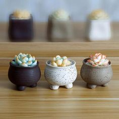 Earthen Planter Set - Turtle Leaf #potterywheel #innovativepottery Slab Pottery, Pottery Wheel, Ceramic Pottery, Pottery Art, Thrown Pottery, Pottery Painting, Hand Built Pottery, Ceramic Clay, Ceramic Planters