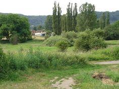 Natur #pur im Almet in St. #Arnual. Natur #pur im Almet in St. #Arnual.  #Saarbruecken / #Saarland | Natur #pur im Almet in St. #Arnual. http://saar.city/?p=32692