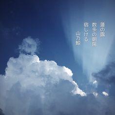 蓮の露 数多の朝陽 宿しける [山乃鯨] #俳句 #photoikku #jhaiku #写真俳句 #VSCOcam