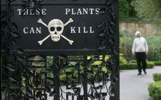 Il giardino dei veleni: ecco dove sono le erbe più velenose al mond