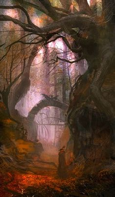Forest Portal, The Enchanted Wood photo via courtney - fantasy art. ✤ || CHARACTER DESIGN REFERENCES | キャラクターデザイン •