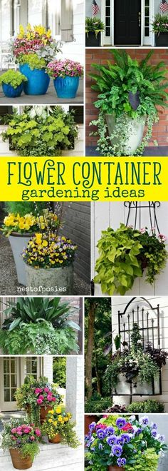 Flower Container Gardening Ideas that are beautiful and lush. Easy to grow flowe… Flower Container Gardening Ideas that are beautiful and lush. Easy to grow flower planters that will inspire your home's flower container gardening ideas. Container Flowers, Flower Planters, Container Plants, Garden Planters, Container Gardening, Flower Pots, Flower Ideas, Succulent Containers, Container Homes